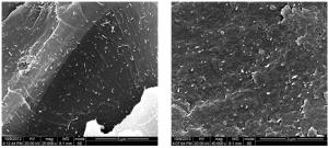 Carbon Nanotubes Epoxy Composite