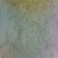 silver-nanowires-30nm-40x