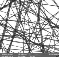 silver-nanowires-30nm-sem-ted
